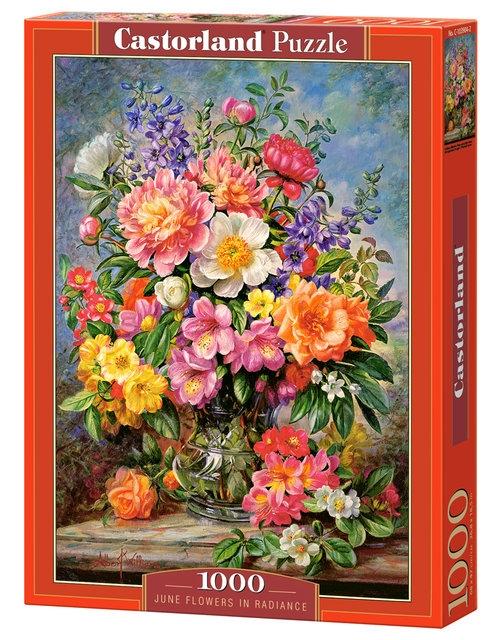 Puzzle 1000 June Flowers in Radiance (C-103904)