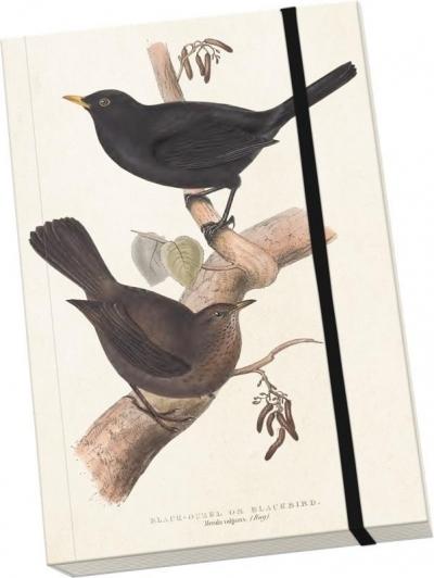 Notatnik ozdobny A5 STNOTE 90 Ptaki