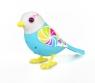 DigiBirds z ramką Candy