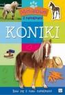 Minialbum z naklejkami Koniki