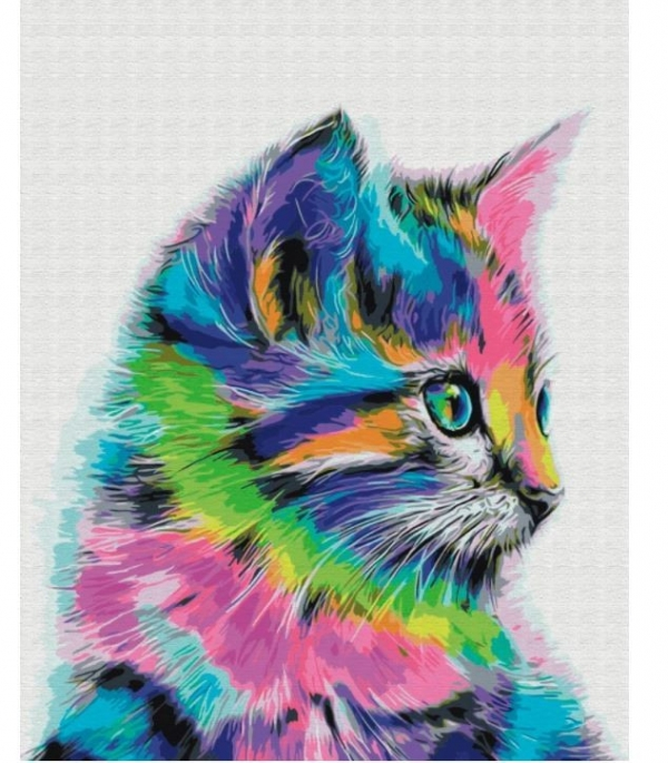 Obraz Malowanie po numerach - Kot neon (BS28359)