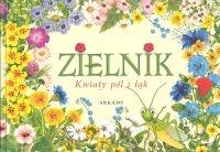 Zielnik Kwiaty pól i łąk Rekłajtis-Zawada Agnieszka