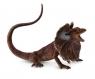 Jaszczurka Agama kołnierzasta L