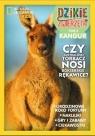 Dzikie Zwierzęta 5 Kangur