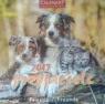 Kalendarz 2017 7PL 325x325 Przyjaciele CRUX