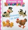Zwierzęta i ich dzieci Obrazki dla maluchów