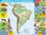 Puzzle ramkowe 72: Ameryka Południowa - mapa fizyczna