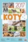 Kalendarz 2017 ścienny Koty