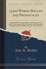 13500 Words Spelled and Pronounced Together With Valuable Hints and Bechtel John H.