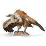 Sęp płowy new 2013 (14691)