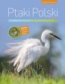 Ptaki Polski Encyklopedia ilustrowana Kruszewicz Andrzej G.