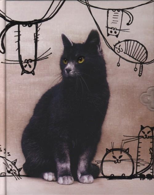 Pamiętnik Czarny Kot