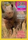 Dzikie Zwierzęta 6 Nosorożec