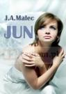 JUN J. A. MALEC
