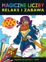 Magiczne liczby Tajemnicze Kształty - Pirat