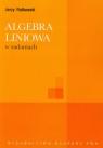 Algebra liniowa w zadaniach Rutkowski Jerzy