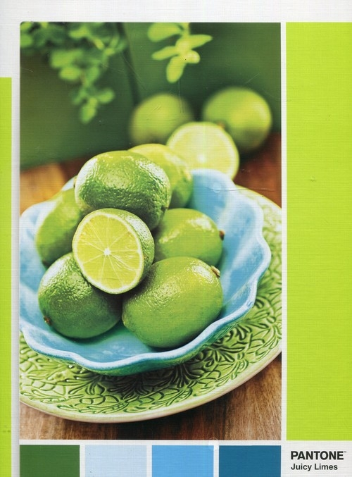 Puzzle 1000: Pantone Lime Punch
