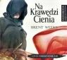 Na Krawędzi Cienia. Audiobook Brent Weeks, Tomasz Ignaczak (czyt.)