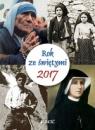 2017 rok ze świętymi (ścienny kalendarz zdzierany) Opracowanie zbiorowe