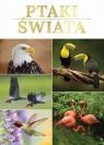 Ptaki świata
