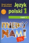 Między nami 1 Język polski Zeszyt ćwiczeń Część 1Gimnazjum Łuczak Agnieszka, Prylińska Ewa
