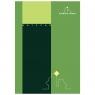 Notatnik Class Green Town A5 krata 50