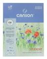 Blok rysunkowy Canson akwarela biały 10 250g 300x400 (6666-314)
