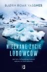 Nieznane życie lodowców. Jak lód z kół podbiegunowych wpływa na Bjørn Vassnes