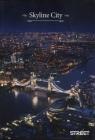 Zeszyt A4 w kratkę 54 kartki Skyline city