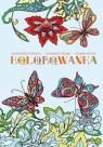 Kolorowanka antystresowa dla dorosłych Motyle