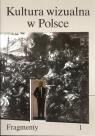 Kultura wizualna w Polsce praca zbiorowa