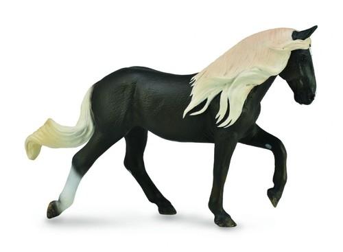 Koń rasy Rocky Mountain XL (88793)