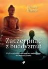 Zaczerpnąć z buddyzmu! Czyli co z buddyzmu możemy zaadaptować do chrześcijaństwa