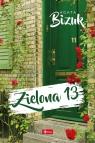 Zielona 13