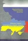 Półwysep Krymski strategiczny element relacji rosyjsko-ukraińskich Błażejewicz Zbigniew, Krzykowski Piotr, Żyła Marek
