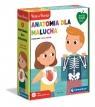 Anatomia dla malucha: Poznajemy ciało ludzkie (50694) Wiek: 4+