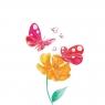 Karnet Swarovski kwadrat CL2613 Różowe motyle