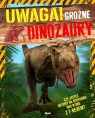 Uwaga! Groźne dinozaury Hibbert Clare