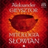 Mitologia słowian audiobook Aleksander Gieysztor