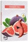 Podgrzewacz zapachowe słoda figa. Pakowany 6 szt.