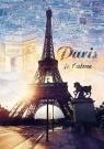 Puzzle 1000 Paryż o świcie (10394)