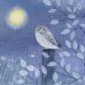 Karnet kwadrat z kopertą Little Owl