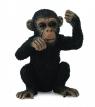 Szympans młody myślący S (88495)