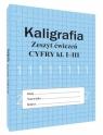 Kaligrafia zeszyt ćwiczeń. Cyfry kl. 1-3