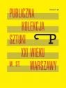 Format P Nr.6 Publiczna kolekcja sztuki XXI w. ... praca zbiorowa