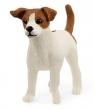 Jack russell terrier - Schleich (13916)