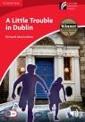 A Little Trouble in Dublin MacAndrew Richard