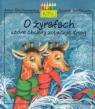 O żyrafach które chciały zobaczyć śnieg Onichimowska Anna