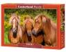 Puzzle 1000: Horse Friends (C-103959)