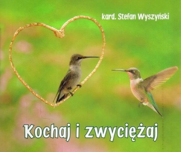 Kochaj i zwyciężaj. Perełka 235 PERELKA B235